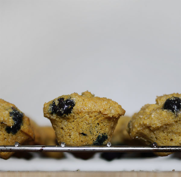 blueberry almond & corn muffins. Gluten free: Made with almond & corn...