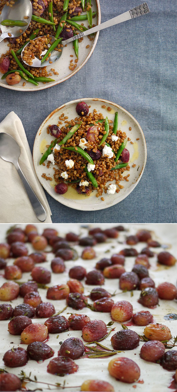 Fall Wheat Berry Salad, Honest Fare by Gabrielle Arnold