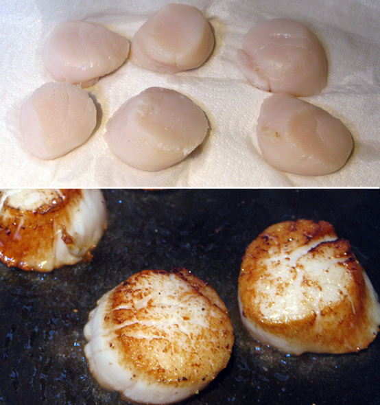 scallop-process1