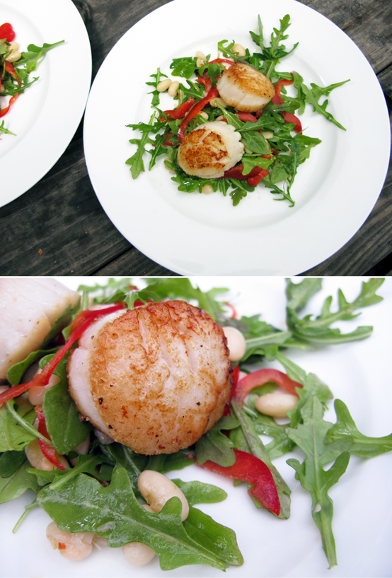 Seared scallops over white bean and arugula salad | Honest ...