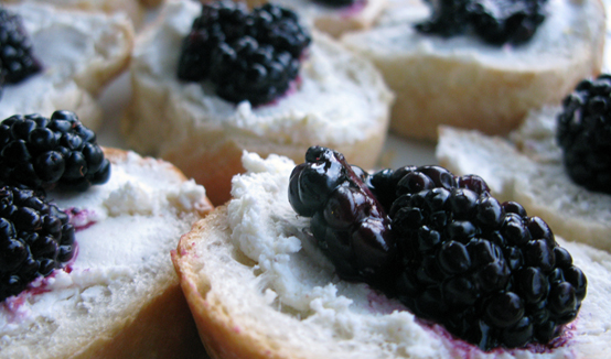 Blackberry & Goat Cheese bites, Honest Fare by Gabrielle Arnold