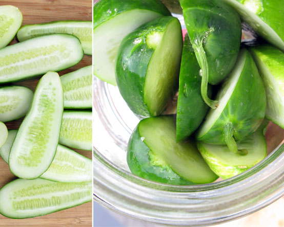 24-hour Pickles!, Honest Fare by Gabrielle Arnold