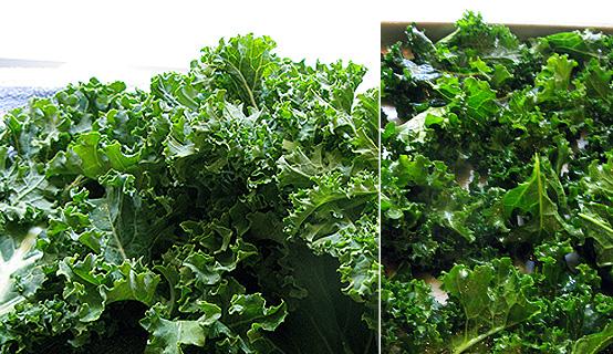 kale-chip-process-by-honestfare