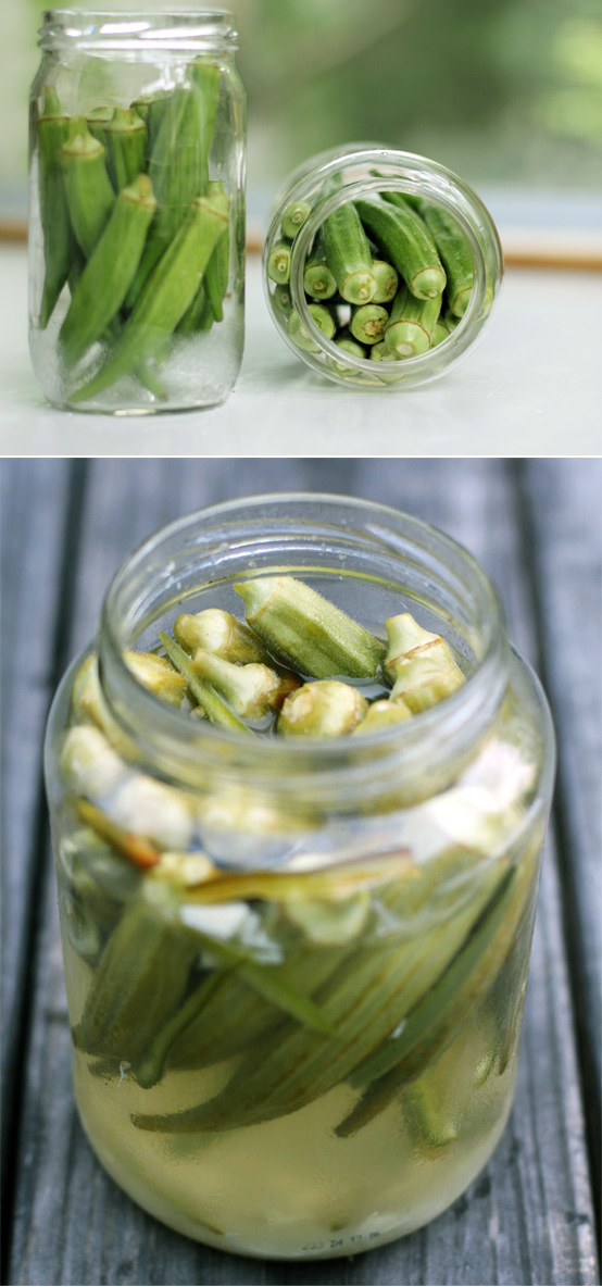 Pickled Okra, Honest Fare by Gabrielle Arnold