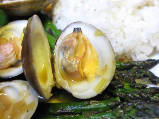 clam2large
